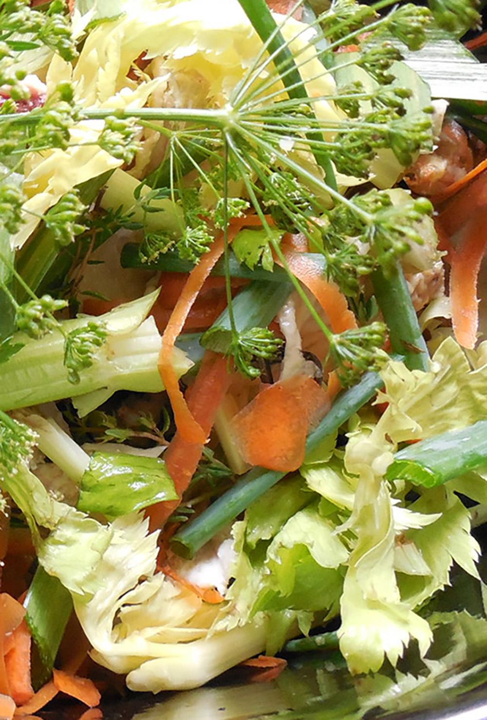 veggie scraps2